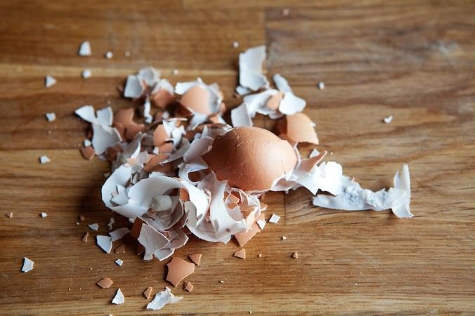 eggshells1